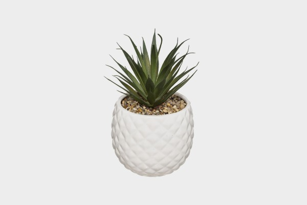 Pineapple Potted Plant (Assorted Colors)